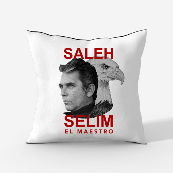 Picture of Saleh Selim Cushion