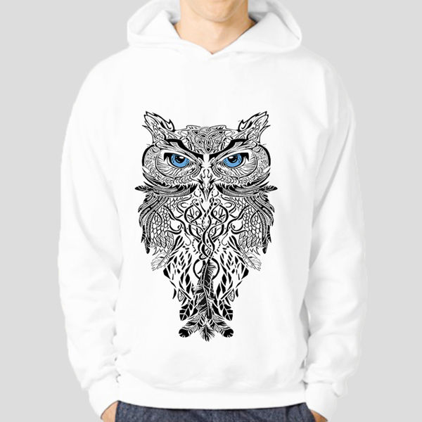 Picture of Owl Hoodie